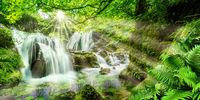 Idyllischer Wald mit Wasserfällen