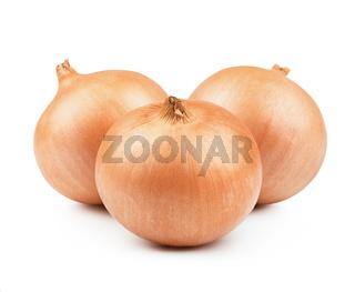 Orange onion vegetable