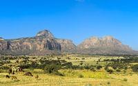 Grosser Afrikanischer Grabenbruch, nördliche Ausläufer mit dem Gheralta Bergmassiv, Aethiopien