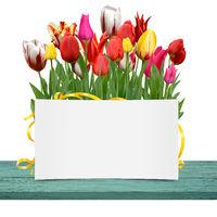 Blumen 1048