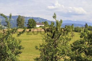 Obstanbaugebiet am Bodensee, Landschaftsbild, Mai