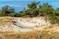 Naturschutzgebiet an der Ostsee -30.jpg