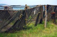 Fischernetze, Mèze, Frankreich