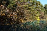 Goshiki-numa Urabandai Fukushima Autumn Japan