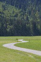 Radweg im Graswangtal