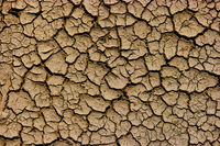 Global warming concept - cracked dry soil top view, background for envitonmental flyer design