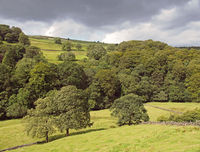green sunlit landscape with hillside fields along a tree covered valley with grey clouds in the elphin valley between cragg vale and mytholmroyd in west yorkshire