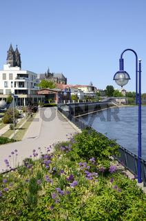 Elbuferpromenade, Magdeburg