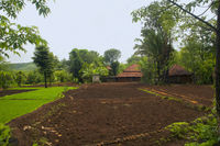 View of a farm house in konkan, Maharashtra