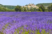 Altes Dorf Banon auf einem Hügel mit davor liegendem Lavendelfeld