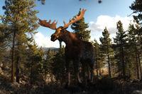 Digital 3D Illustration of a Moose