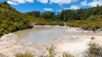 geothermal activity at Whakarewarewa Rotorua New Zealand