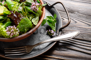 Clay dish with salad of avocado, green and violet lettuce, lamb's lettuce and oregano flowers with vintage fork aside