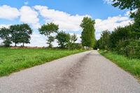 Leere Straße neben grüner Wiese im Sommer