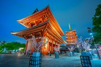 Senso-ji temple at night in Tokyo city, Japan