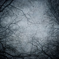 Grunge image of tree silhouettes. Perfect halloween background.