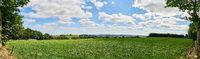 Grüne Wiese als Panorama Hintergrund mit Himmel
