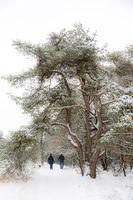 Paar mit Hund im Schnee 7A3406.jpg