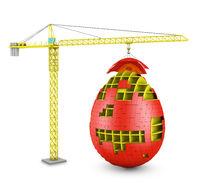 crane builds egg
