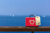 Red suitcase on travel-9.jpg