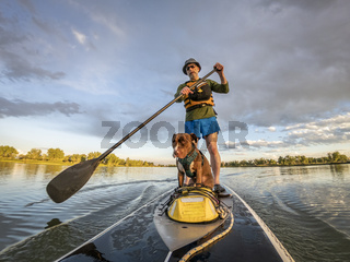 stand up paddling with a pitbull dog