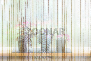 Small potted flowers blooming near window behind curtain