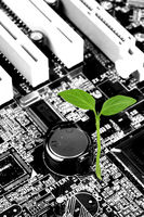 Green Sprout on a motherboard, Green and eco-friendly technology
