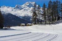 Langlaufloipen auf dem zugefrorenen Champfersee, Champfer, Engadin, Graubünden, Schweiz