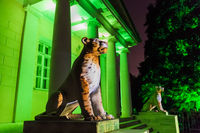 Illumination in park Kolomenskoe - Moscow Russia