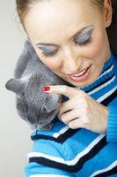 Pamper cat