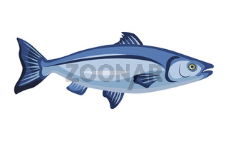 Raw whole salmon icon isolated on white background, fresh fish, product, healthy food, vector illustration.
