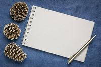 blank art sketchbook with frosty pine cones