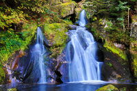 Triberger Wasserfälle