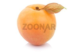 Aprikose Frucht Obst frisch Freisteller freigestellt isoliert