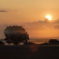 Zauberland... Sonnenaufgang *im Nebel*