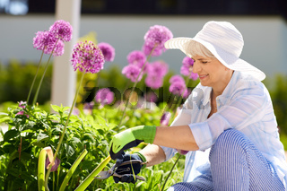 senior woman with garden pruner and allium flowers