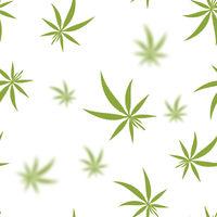 Green Cannabis Leaves Seamless Background. Marijuana Pattern. Medical Hemp Growth