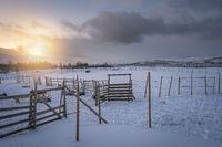Fence in a reindeer Sami camp