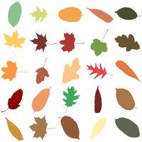 Sammlung bunter Herbstblätter als nahtloses Muster