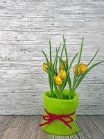 Hintergrund Frühling gelbe Tulpen auf Holz