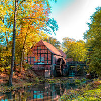 Forest in autumn and a beautiful and picturesque watermill