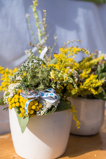 blühende Kräuter und kleine Blumen als Strauss in einem Blumentopf
