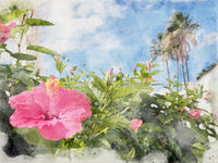 watercolor painting of a tropical holiday vacation scene with a bright pink hibiscus flower in front of white blurred buildings and palm trees against a bright sunny blue sky and fluffy white clouds
