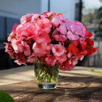 vase of flower, pink geranium bouquet
