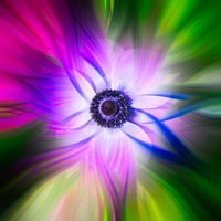 Abstract twirl effect background with flower