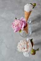 Summer charming flowers peony in a wafer cups at glasses on a gray background.