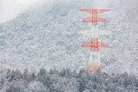 electric pole Winter Landscape