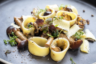 Traditional Italien calamarata noodles with mushroom and parmesan as close up on a plate
