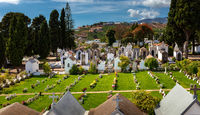 Friedhof in Funchal
