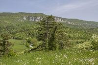 Landschaft im Cicarijagebirge in Istrien